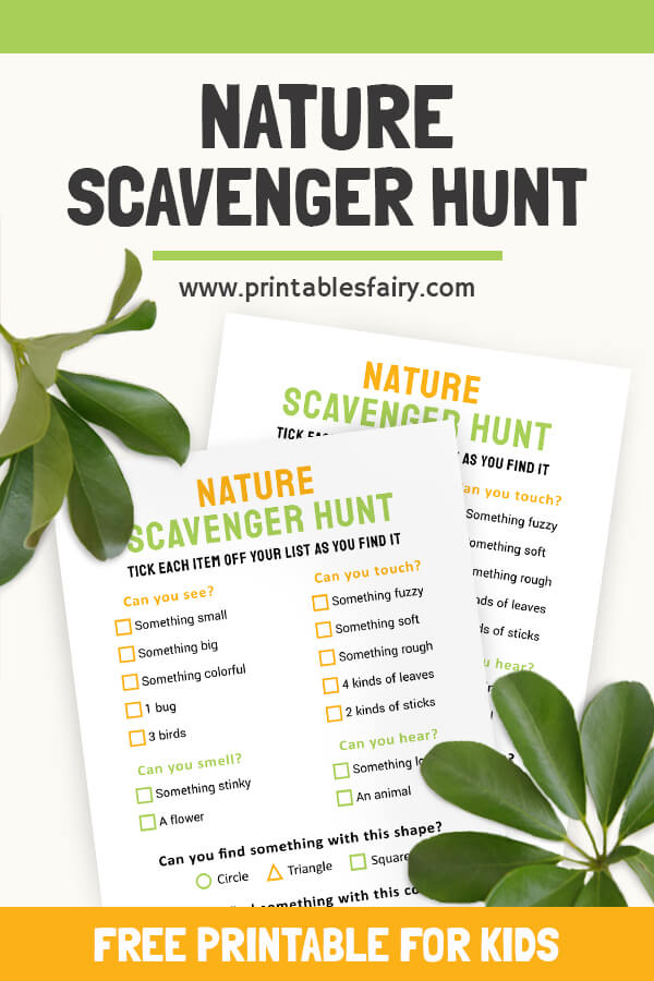 Picture of the Nature Scavenger Hunt