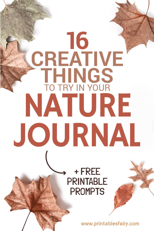Creative ideas for your nature journal